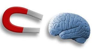 Điều khiển bộ não bằng từ từ trường nam châm